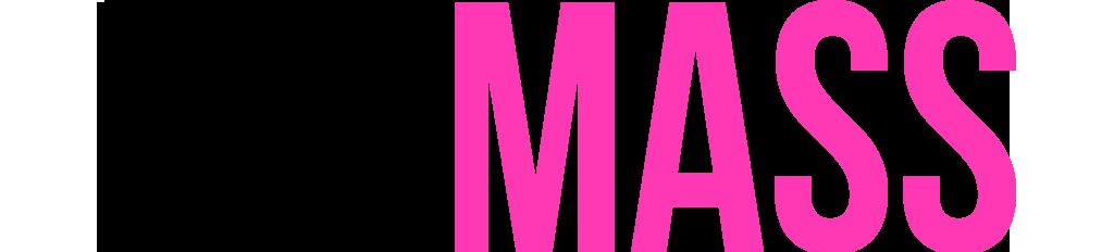 logo FIT MASS